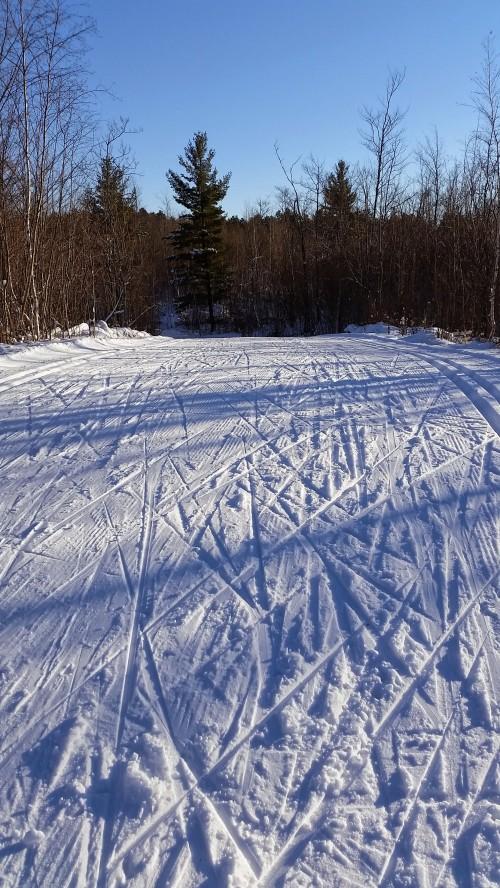 I think I'll go skiing.